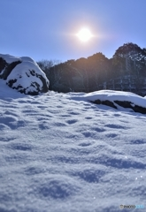 雪もスベれば話もスベる!