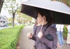 新百合散歩 (1)