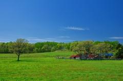 ハンモックで昼寝したい草原