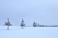 無音の雪原~バリエーション