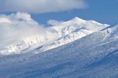 山のスロープがお気に入り 富良野から望んで