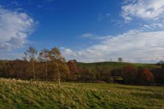 晩秋の高原