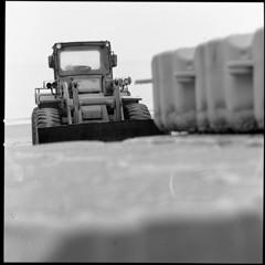 浜の清掃人