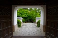 緑道に続く門
