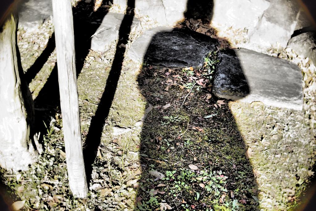 枯れ葉マフラー