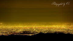 Tokyo Brightness