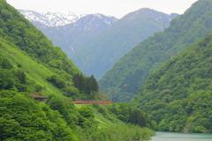春の峡谷を走るトロッコ列車
