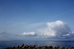 海よ、雲よ、鳥よ