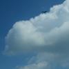 お~い!大空から何が見える?