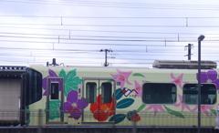鉄子、隣の県の電車を撮ってきた。