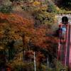 晩秋のトロッコ列車(作業用)