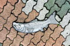 歩道を泳ぐ鮭Ⅰ