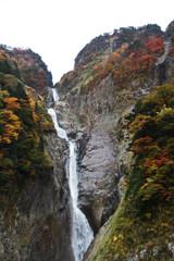称名滝&ハンノキ滝