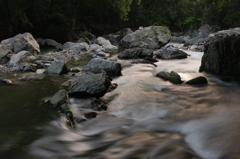 深緑の川辺 2