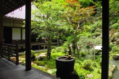 グリーンな庭園