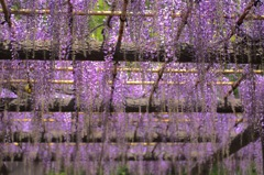 拝島神社 ②