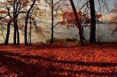 洞爺湖 落ち葉の音色