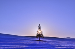 美瑛 雪原を翔る夕日
