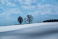 美瑛 雪景色