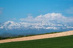 十勝岳の春