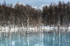 雪の池から青い池へ