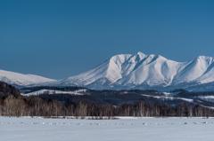 雪の十勝岳連峰オプタテシケ山