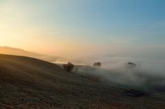 朝霧舞う高原の肌