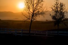 美瑛 秋の夕日