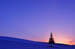 美瑛 春雪の丘