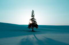 美瑛 隠れる夕日