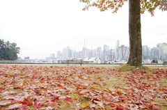 autumn sign