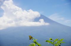 富士まで飛ぶか!