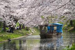 春風と十石舟