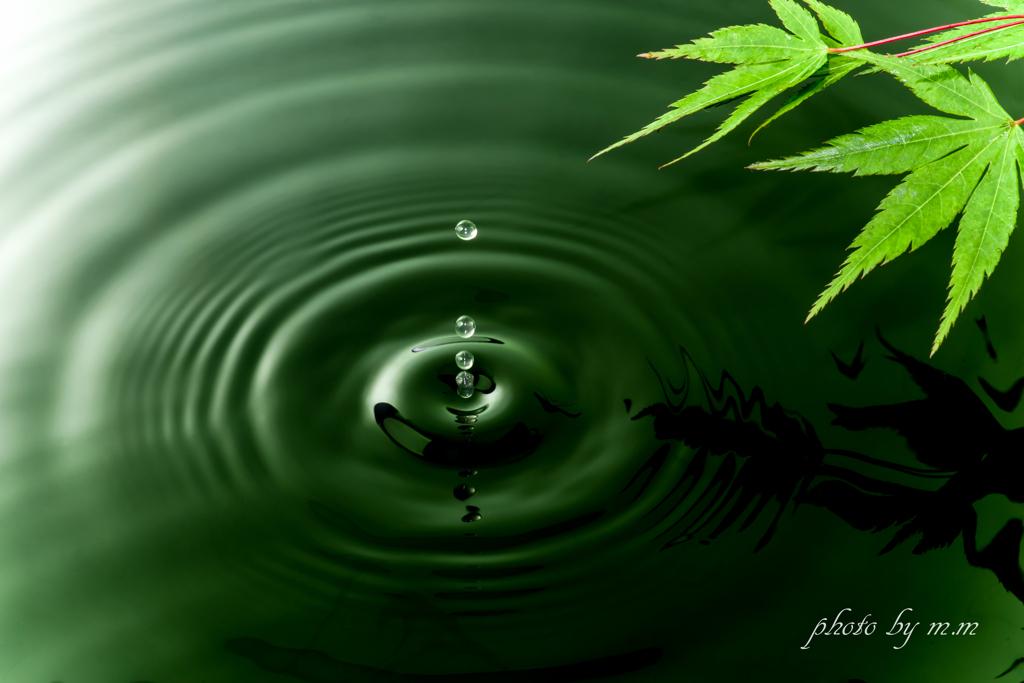 緑光の波紋