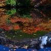 逆さ茶臼岳の紅葉