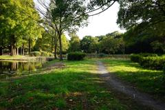 秋の水元公園 2