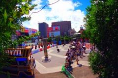 魚眼×中央公園