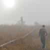 朝靄を歩く