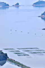 伊勢志摩スカイラインからの眺望