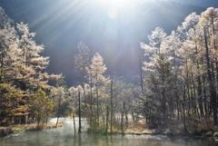 秋の田代池
