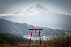 鳥居と富士