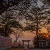 樽水本宮神社の夕景