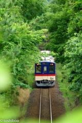夏行き列車