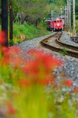 秋色列車がやってくる