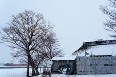 津軽の冬「かっちょ」