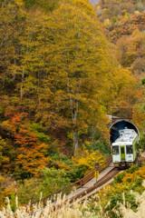 トンネルを抜けると、そこは秋だった