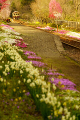 花咲く駅に陽は呉れて