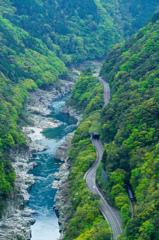 新緑の渓谷を駆け抜ける