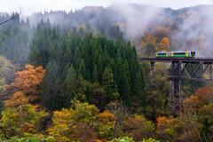雨霧漂う秋の谷
