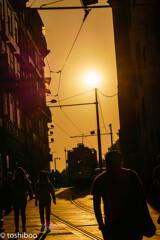 黄金色の小路